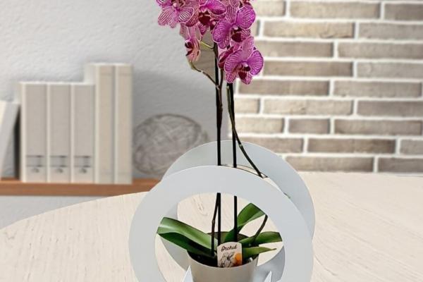 Porta pianta con vaso incluso, senza orchidea, in metallo intagliato al laser e plastica. Cm. 33 x 33 x 14,5. Made in Italy.